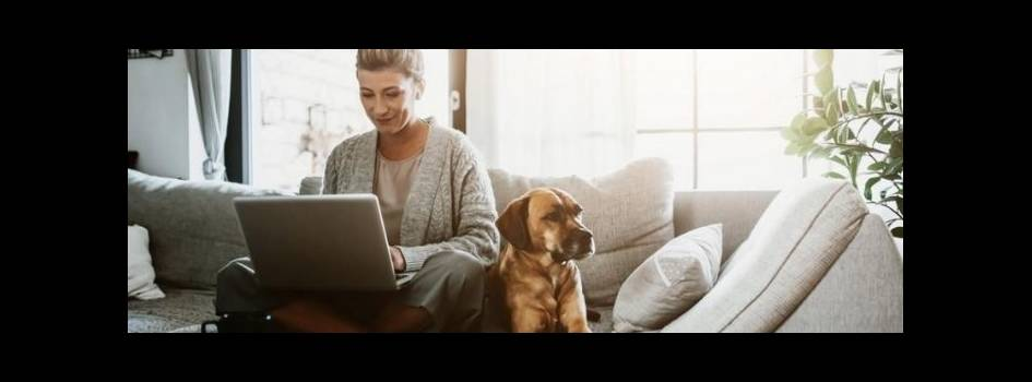 Woman working on laptop sitting at home with a pet dog