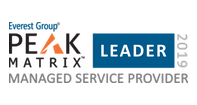 Everest Peak Matrix 2019 Managed Service Provider